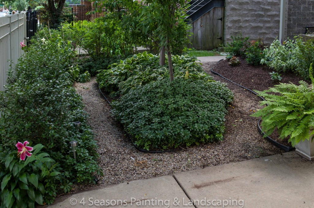 Front & Back Landscaping and Patio Painting in Chicago